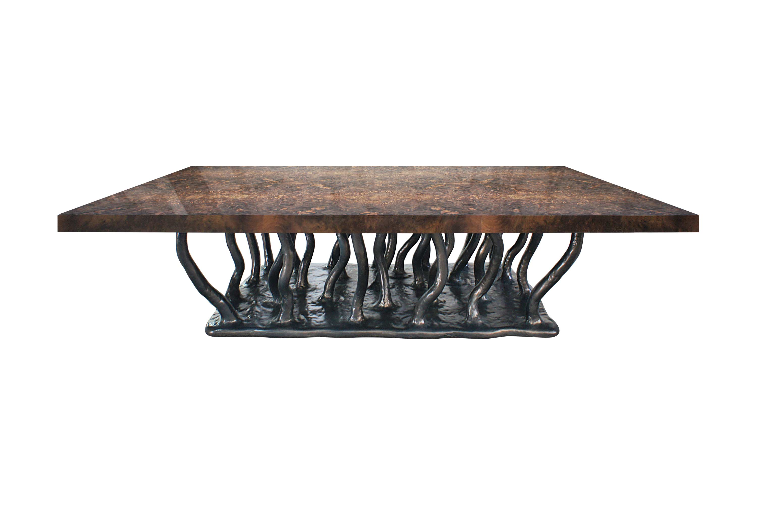 Allana Coffee Table with Rectangular Walnut Root Venner Top
